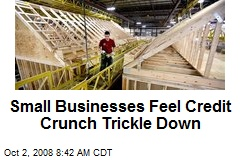 Small Businesses Feel Credit Crunch Trickle Down