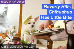 Beverly Hills Chihuahua Has Little Bite