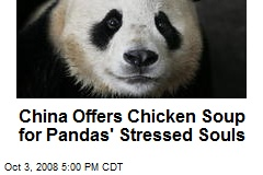 China Offers Chicken Soup for Pandas' Stressed Souls