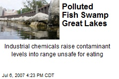 Polluted Fish Swamp Great Lakes