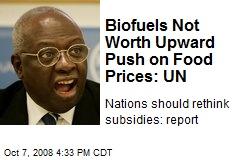 Biofuels Not Worth Upward Push on Food Prices: UN