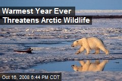 Warmest Year Ever Threatens Arctic Wildlife