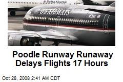 Poodle Runway Runaway Delays Flights 17 Hours
