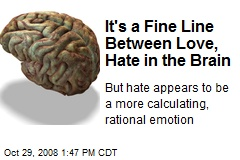It's a Fine Line Between Love, Hate in the Brain