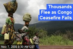 Thousands Flee as Congo Ceasefire Fails