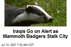Iraqis Go on Alert as Mammoth Badgers Stalk City