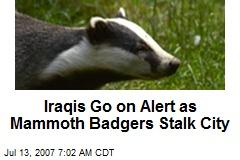Iraqis Go on Alert as Mammoth Badgers Stalk City