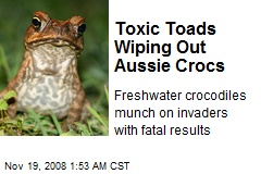 Toxic Toads Wiping Out Aussie Crocs