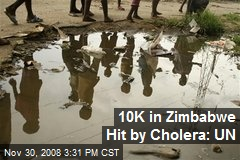10K in Zimbabwe Hit by Cholera: UN
