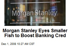Morgan Stanley Eyes Smaller Fish to Boost Banking Cred