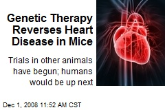 Genetic Therapy Reverses Heart Disease in Mice