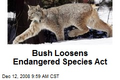 Bush Loosens Endangered Species Act