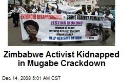 Zimbabwe Activist Kidnapped in Mugabe Crackdown