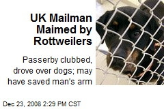 UK Mailman Maimed by Rottweilers