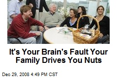 It's Your Brain's Fault Your Family Drives You Nuts