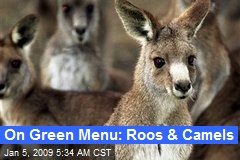 On Green Menu: Roos & Camels