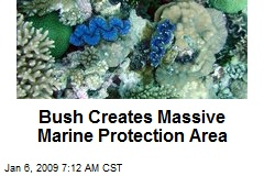Bush Creates Massive Marine Protection Area