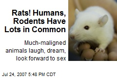 Rats! Humans, Rodents Have Lots in Common