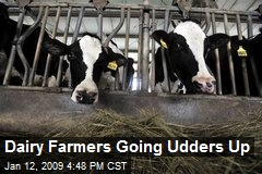 Dairy Farmers Going Udders Up