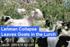 Lehman Collapse Leaves Goats in the Lurch