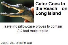 Gator Goes to the Beach—on Long Island
