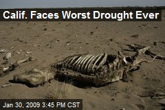 Calif. Faces Worst Drought Ever