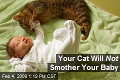 Your Cat Will Not Smother Your Baby