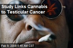 Study Links Cannabis to Testicular Cancer