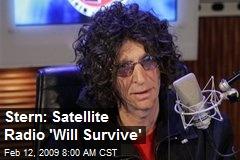 Stern: Satellite Radio 'Will Survive'