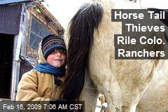 Horse Tail Thieves Rile Colo. Ranchers