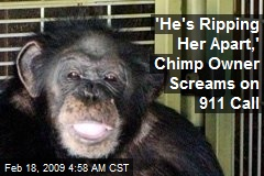 'He's Ripping Her Apart,' Chimp Owner Screams on 911 Call