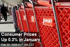 Consumer Prices Up 0.3% in January