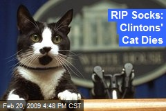 RIP Socks: Clintons' Cat Dies