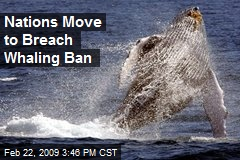 Nations Move to Breach Whaling Ban