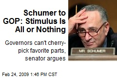 Schumer to GOP: Stimulus Is All or Nothing