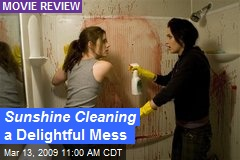 Sunshine Cleaning a Delightful Mess