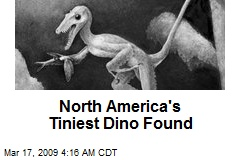 North America's Tiniest Dino Found
