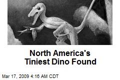 North America's Tiniest Dino Found