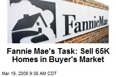 Fannie Mae's Task: Sell 65K Homes in Buyer's Market