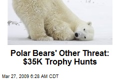 Polar Bears' Other Threat: $35K Trophy Hunts