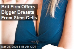 Brit Firm Offers Bigger Breasts From Stem Cells
