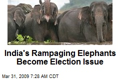 India's Rampaging Elephants Become Election Issue