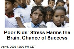 Poor Kids' Stress Harms the Brain, Chance of Success