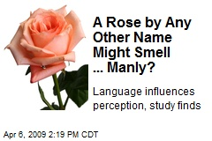 A Rose by Any Other Name Might Smell ... Manly?