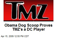 Obama Dog Scoop Proves TMZ's a DC Player