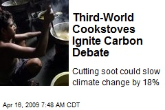 Third-World Cookstoves Ignite Carbon Debate