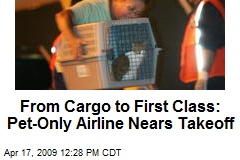 From Cargo to First Class: Pet-Only Airline Nears Takeoff