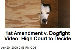 1st Amendment v. Dogfight Video: High Court to Decide