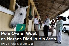 Polo Owner Wept as Horses Died in His Arms