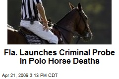 Fla. Launches Criminal Probe In Polo Horse Deaths